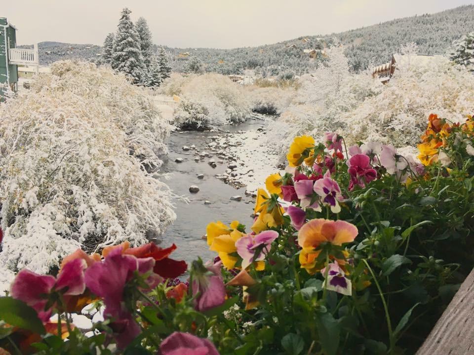 Visit Nederland Colorado